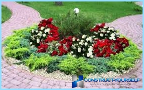 Beautiful design and layout of flower beds and flower beds at the cottage
