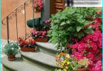 lits de conception et de parterres de fleurs dans le pays avec leurs propres mains: Options monochromes
