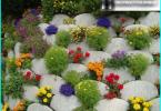 Travailler dans le jardin au mois de Mars: comment prendre soin de votre jardin?